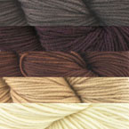 Dream In Color Pathways Blanket Kit At Eat Sleep Knit